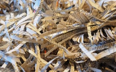 The Importance of Shredding for Small Business Owners
