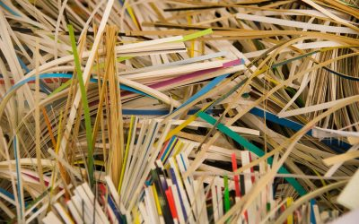 The Shredding of Documents – Why You Should Care